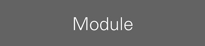 Automotive Module